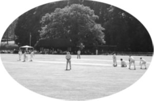 Chawton Cricket Club Old